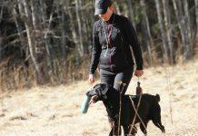 Hundskolan, träna lydnad
