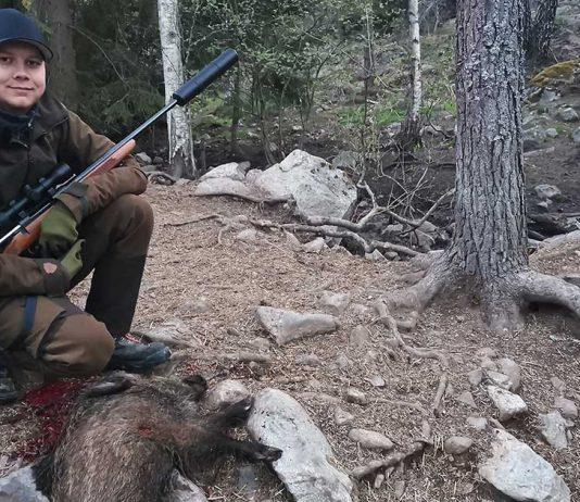 Jägarexamen viltvård foderspridare jaktfilm vildsvin vildsvinsjakt