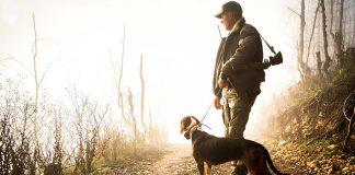 Jägare med jakthund