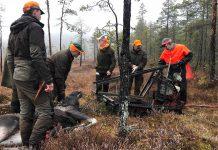 Älgjakt Hälsingland skogsbrand