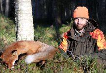 Jakt Rådjur Räv Falun