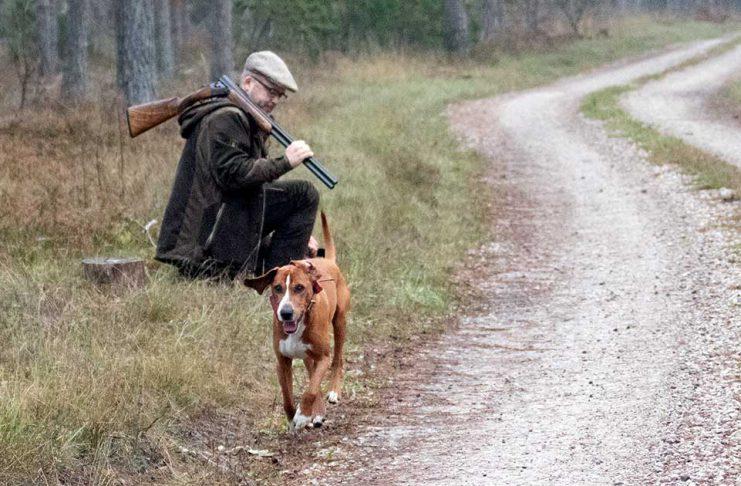 Jaktfilm Har- och rävjakt på Gotland